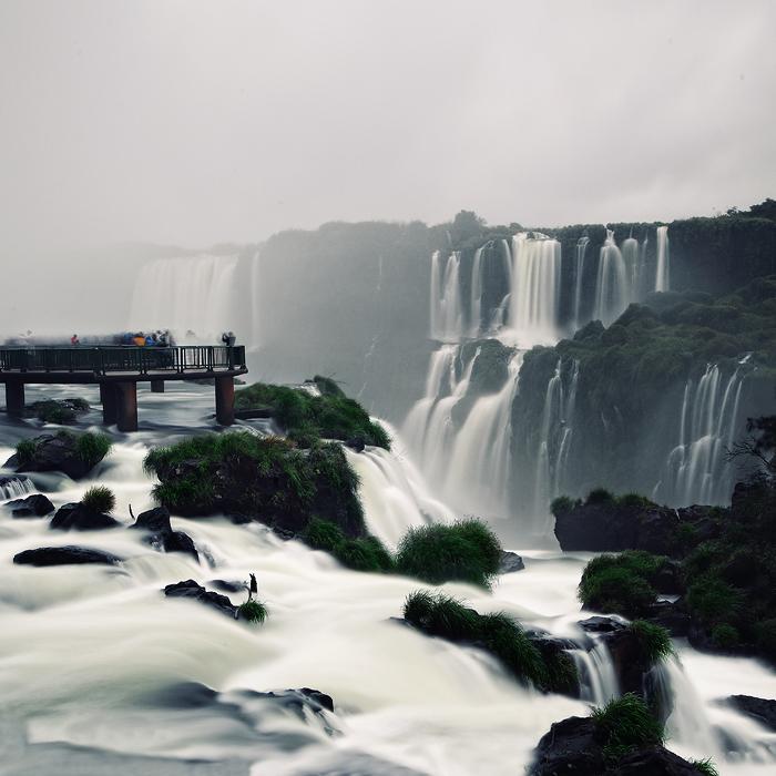THE WILDERNESS - HUSEYIN KARA / BRAZIL